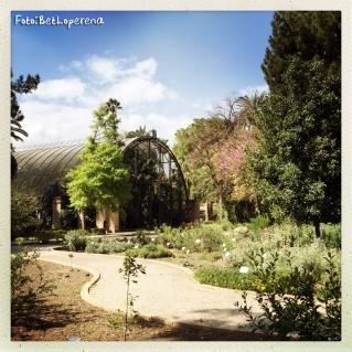 Valencia_Botanic
